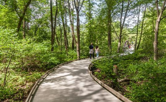 Peaceful Walk in Pennsylvania