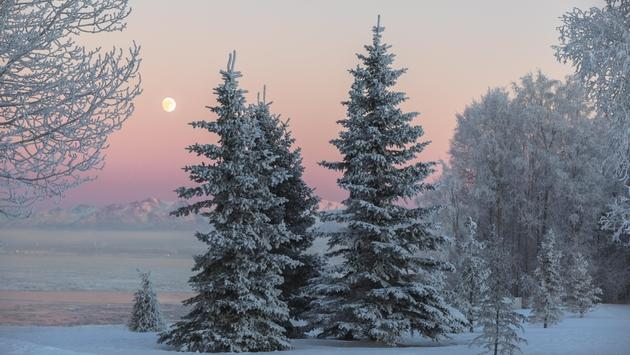 Winter moonrise in Anchorage, Alaska