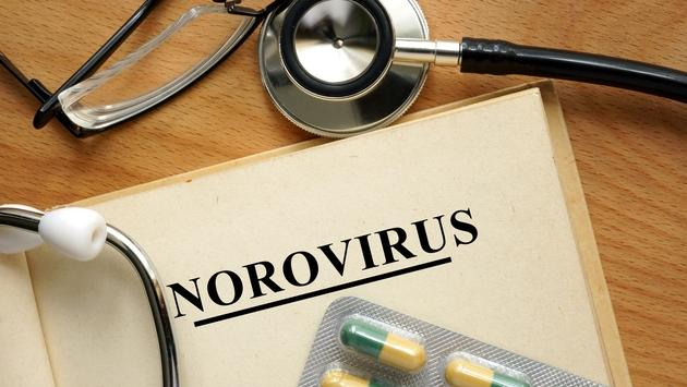 Norovirus, cruise, ship