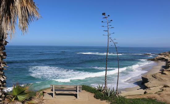 Windansea Beach, La Jolla, San Diego, California
