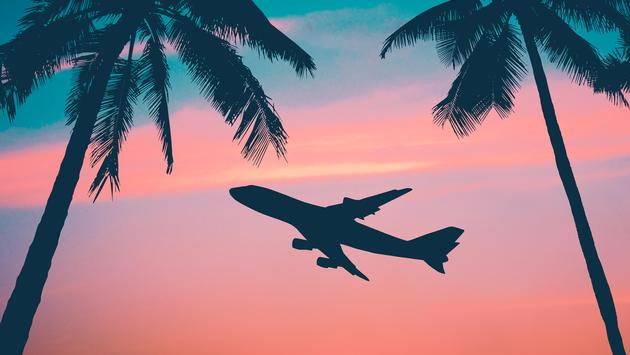 Airliner With Palm Trees