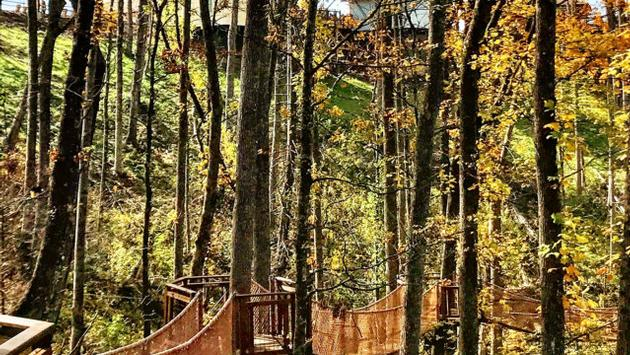 Tree canopy walk at Anakeetsa in Gatlinburg, Tennessee