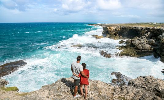 The coast at Animal Flower Cave, Barbados