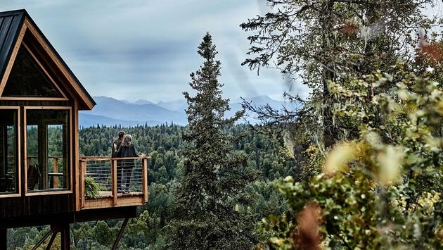 Treehouse at Mt. McKinley Princess Wilderness Lodge