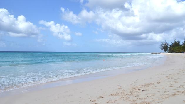 Dover Beach: Barbados