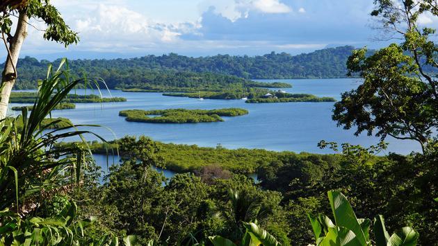 Mangrove-covered islets in the Bocas del Toro archipelago, Panama.