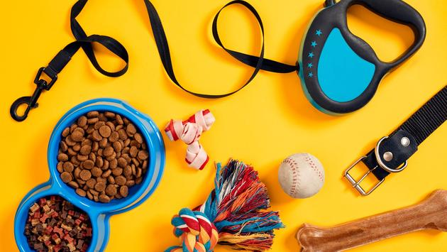 Dog supplies and accessories