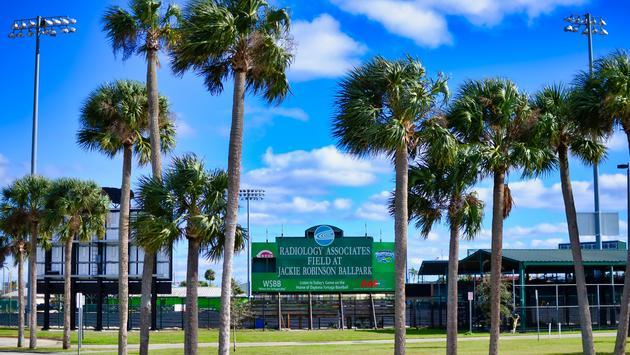 Baseball Field, Ballpark, Palm Trees, Jackie Robinson Ballpark, Daytona Tortugas