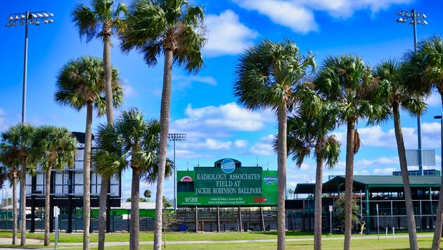 Baseball Field, Ballpark, Palm Trees, Jackie Robinson Ballpark, Daytona Tortugas