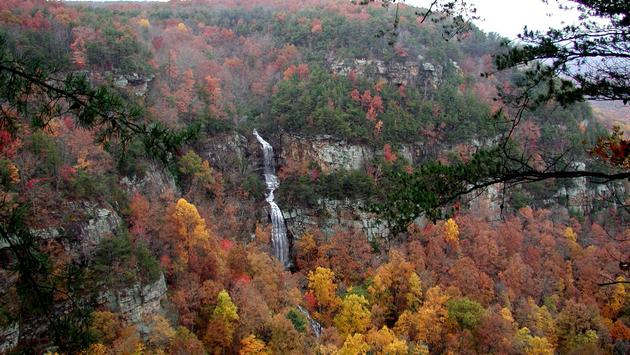 Georgia, Fall, Cloudland Canyon State Park
