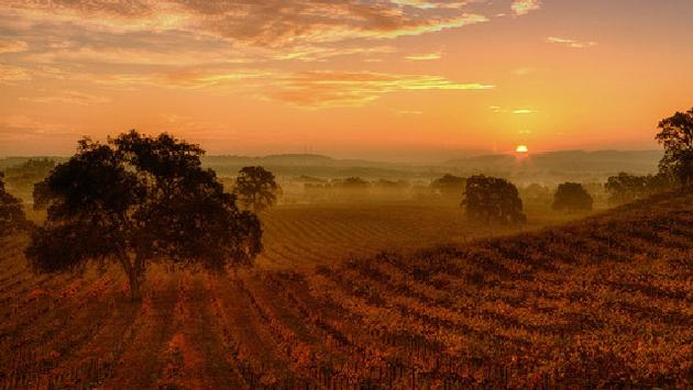 Paso Robles at sunset