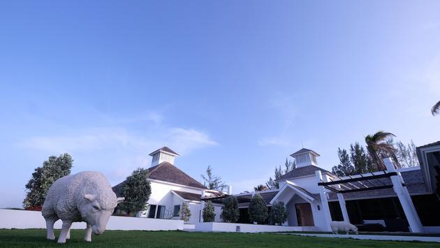 Trident Hotel Jamaica