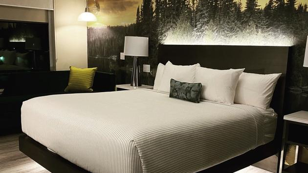 Cambria Hotel Detroit-Shelby Township guestroom.