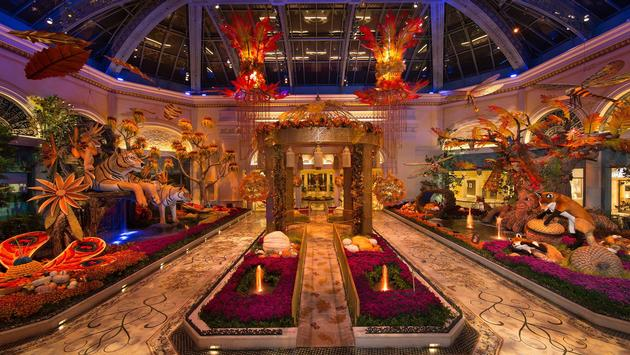 Bellagio's Conservatory & Botanical Gardens Fall Display 2018