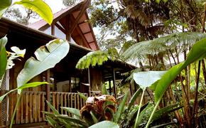 Lotus Garden Inn, Hawaii