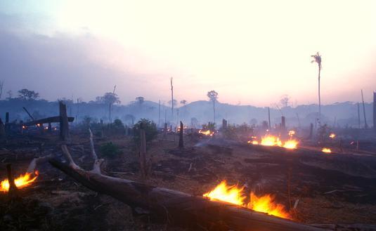 FOTO: Un incendio forestal en el Amazonas. (foto de Brasil2 / E+ Getty Images)