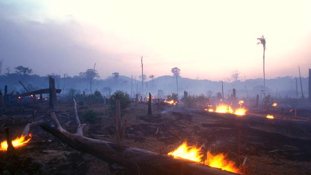 A burning forest at dusk in the Amazon