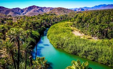 Mulege River in Baja California Sur
