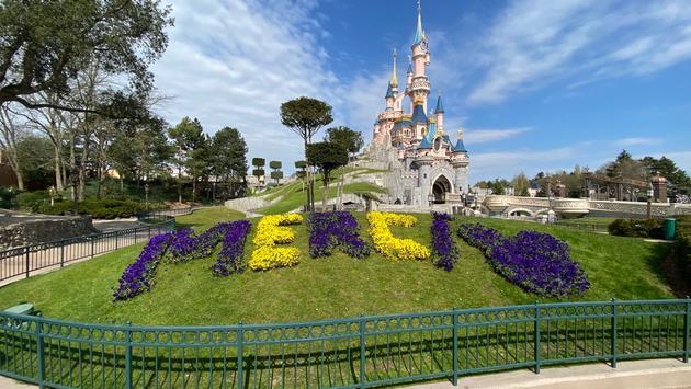 Floral arrangement of 'Merci' at Disneyland Paris