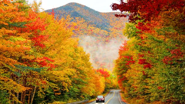 White Mountain National Forest in New Hampshire during autumn.