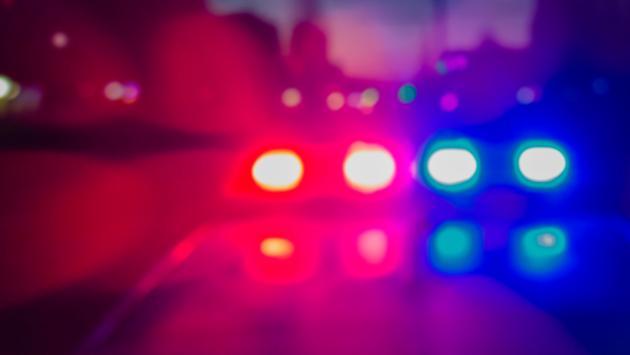police, arrest, cops