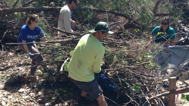 Volunteers help clear debris at a Hawaii fishpond