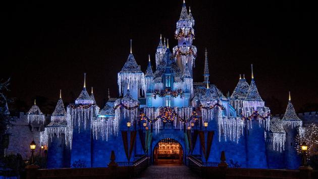 Sleeping Beauty's Winter Castle.