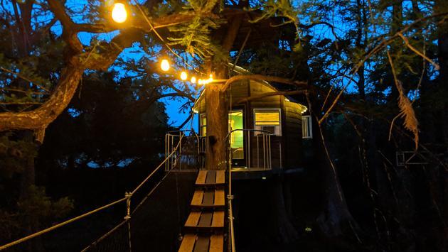 treehouse, night, trees, lights