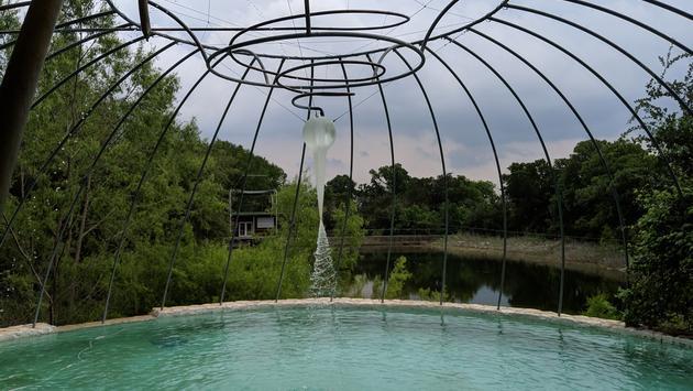 pool, pond, nature