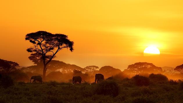 Africa Sunset