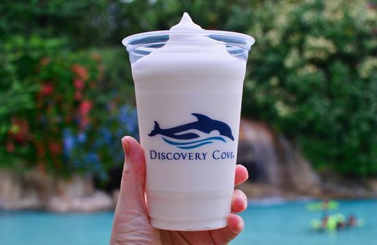 Discovery Cove, slushie, Orlando