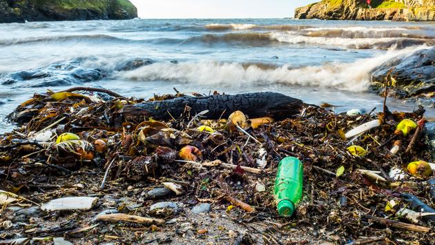 Beach rubbish and garbage washed up on shoreline. (photo courtesy of Nigel_Wallace / iStock / Getty Images Plus)