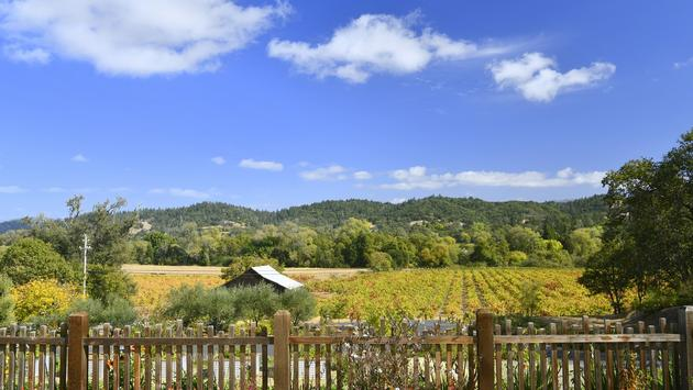 Capo Creek Winery in Healdsburg