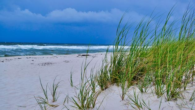 beach, Pensacola, Perdido Key, Gulf Islands National Seashore