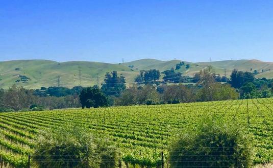 Livermore Valley in California