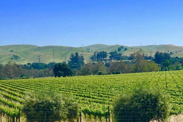 5 Reasons to Visit California's Tri-Valley