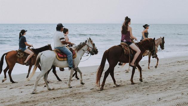 Horseback riding, Las Ventanas