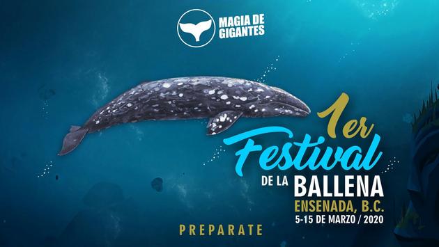 """Primer Festival de la Ballena Gris """"Magia de Gigantes"""" en Ensenada, Baja California. (Foto de Baja California)"""