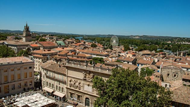 Panoramic view of the city of Avignon.