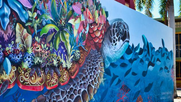 wall mural, Hollywood Florida, turtle, painting