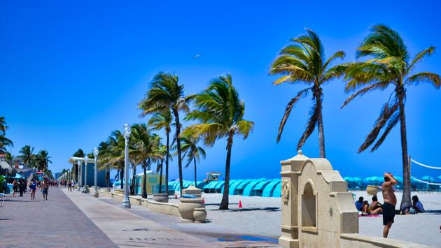 palm trees, beach, Broadwalk, Hollywood Florida
