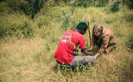 Intrepid Travel Plants Trees in Kenya