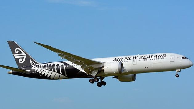 Air NZ leases aircraft to replace gap left by malfunctioning Dreamliners