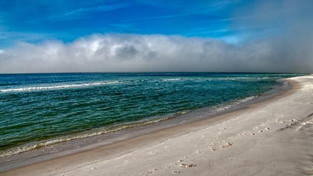 Grayton Beach State Park on the Florida Panhandle