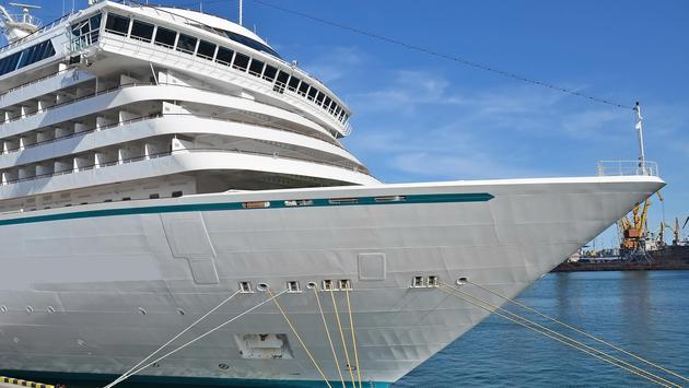 A docked cruise ship