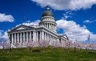 Cherry blossom trees ring the Utah State capitol in Salt Lake City.