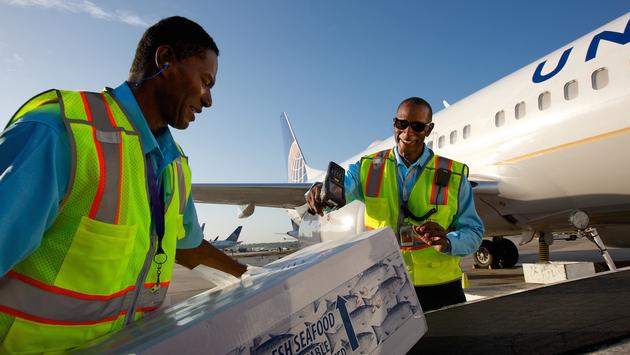 United employees loading cargo into a jet