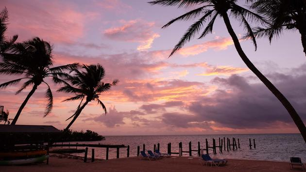 Pines and Palms Resort, Islamorada