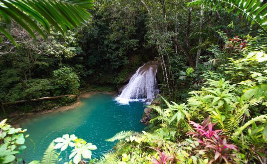 A waterfall in Ocho Rios, Jamaica