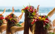Hula halau dancers dressed for a performance